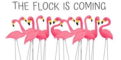 Flamingo Flocking Fundraiser