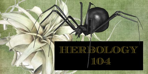 Professor Longbottom's HERBOLOGY 104 Potter in the Park's Spellbound