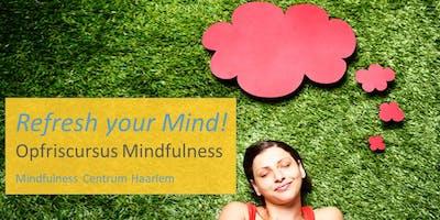 Opfriscursus Mindfulness, start 20 mei in Haarlem