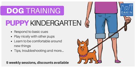Puppy Kindergarten -Springfield tickets
