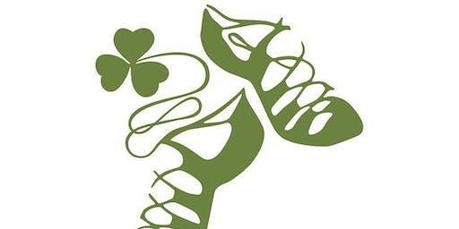 Mary From Dungloe Irish Dancing Feis