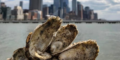 Oysters 101: The Secrets NYC's Bivalves Harbor tickets