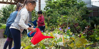 GROWING GREEN SCHOOLS - Growing a Green School Discussion Series