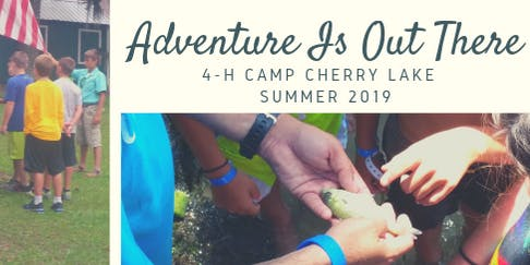 2019 4-H Camp Counselor Leadership Experience