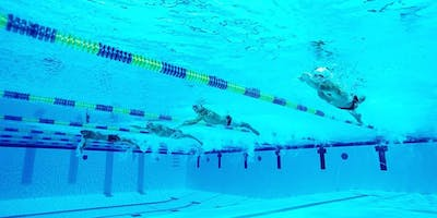 Aldershot Squad Training Sessions - Tuesdays 830pm in a 50 metre Pool