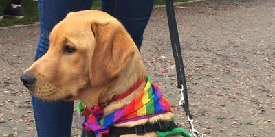 Scottish Adoption Family Dog Walk - Callender Park, Falkirk