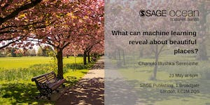 What can machine learning reveal about beautiful...
