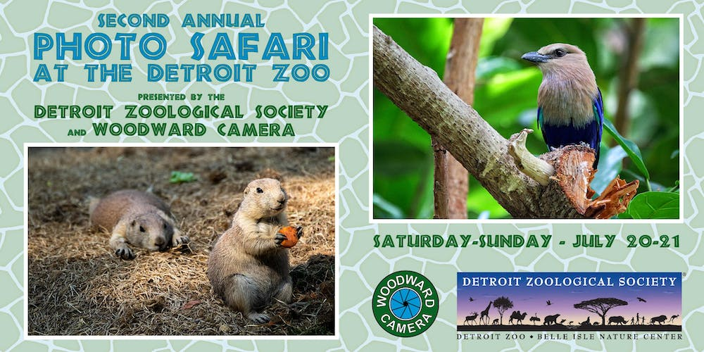 2nd Annual Photo Safari at the Detroit Zoo Tickets, Multiple Dates on