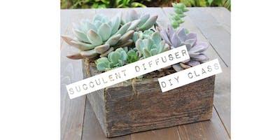 Succulent Diffuser DIY Workshop