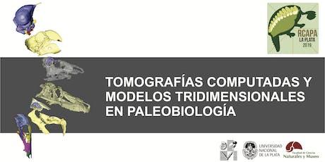 Análisis de tomografías computadas y generación de modelos tridimensionales en Paleobiología entradas