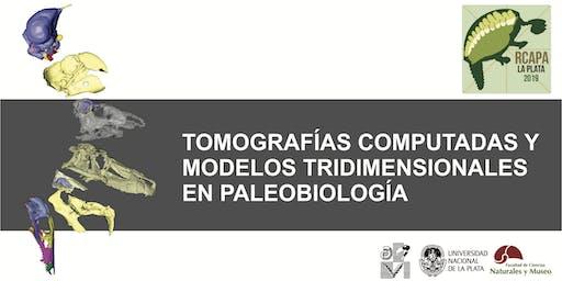 Análisis de tomografías computadas y generación de modelos tridimensionales en Paleobiología