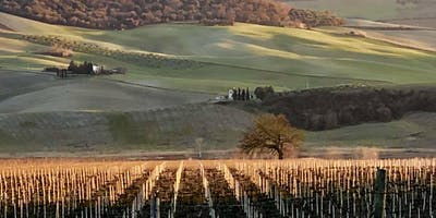 Italian Classics: Art and Wine;  LaDonnaFoto and Sable Gate Winery