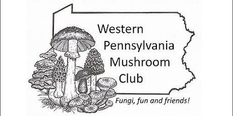 Summer Sycamore Island Fungus Hunt tickets