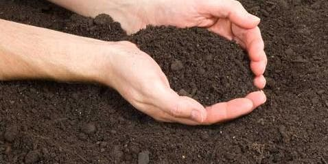 Class: Why Eat Organic? Why Garden in Dirt?