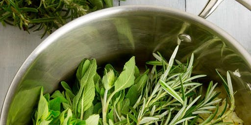 Using Herbs for Amazing Health Benefits
