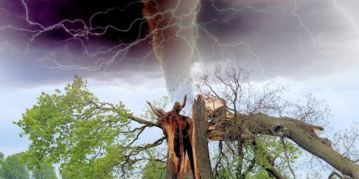Storm Damaged Tree Clean-up Training - June 25