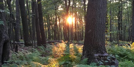 Inner Space 2: Silent Mini-Retreat in the Maryland Mountains tickets