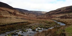 Crowden Invertebrate Recording Day
