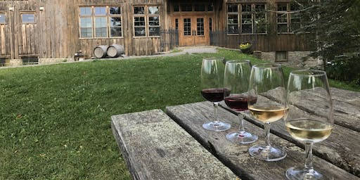 Cozy in The County- Wine Tour in Prince Edward County