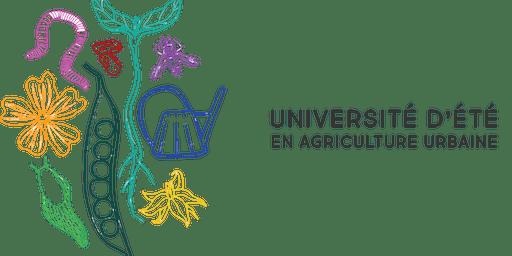 Entomologie agricole: les insectes au potager et principes de lutte intégrée
