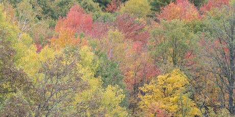 Celebrate the Colours of Fall in New Nature Reserve tickets
