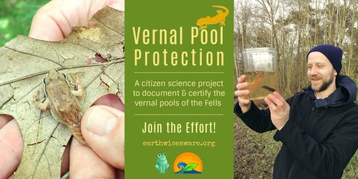 Discovering & Protecting the Vernal Pools of The Fells