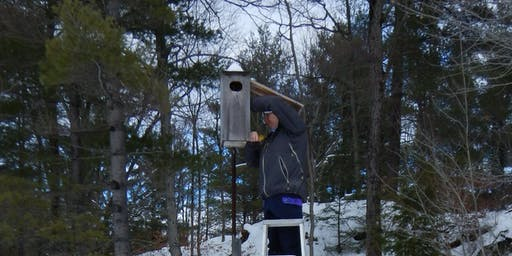 Monitor Wood Duck Box Use