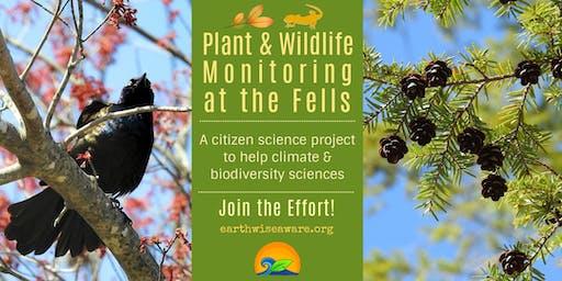 Pollinator, Bird & Plant Monitoring at The Fells