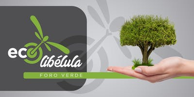 Pitch Foro Verde