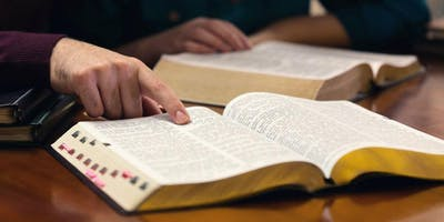 """""""How to Study the Bible for Women""""  5 week study by Maureen Schaffer"""