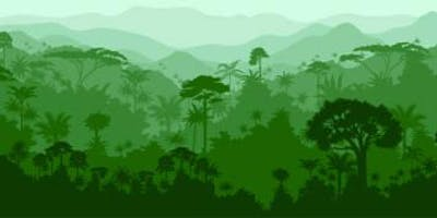 Creation Camp-Rainforest Edition