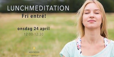 Lunch meditation | fri entré