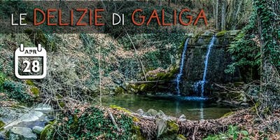 Le Delizie di Galiga