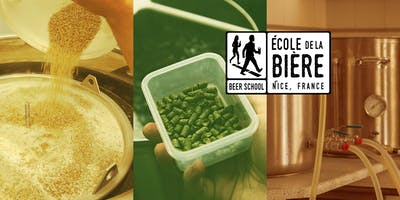 CRAFT BEER brewing workshop (in English)