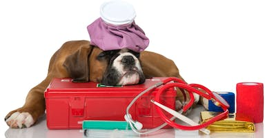 Pet First Aid Course - Stouffville