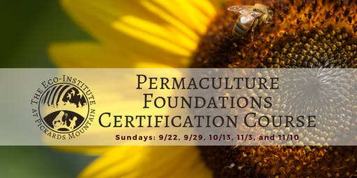 Permaculture Foundations Course
