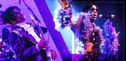 Prince Tribute - The Purple Madness