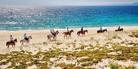 Cavalos na Areia - A Paradise waiting for you. bilhetes