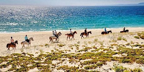 Cavalos na Areia - A Paradise waiting for you. tickets