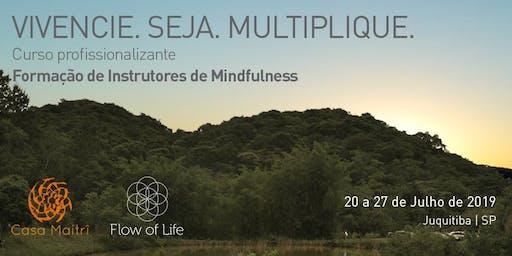 Formação Profissional de Mindfulness - Módulo I (Jul/2019)