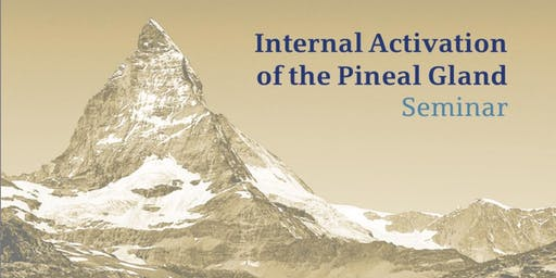 Internal Activation of the Pineal Gland Seminar