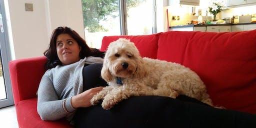Be Dog Smart; A Safety Workshop for Expectant Parents