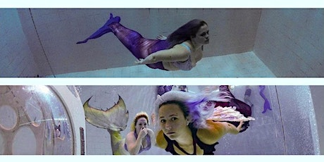Mer-Made Nemo33 Deep Training and Portfolio Building Experience (2 day) January 2020 billets