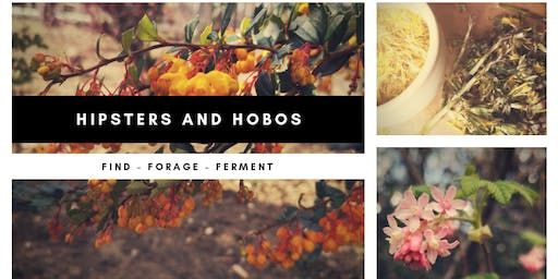 Wednesday Weekly Foraging Walks