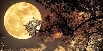 Full moon cacaoceremony