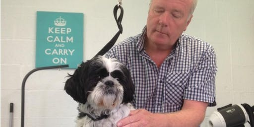 Reiki for Dog Groomers Training Day and Qualification