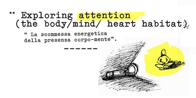 Exploring Attention: the body/heart/mind habitat