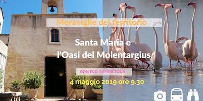 Le Meraviglie del territorio - Santa Maria e l'Oasi del Molentargius