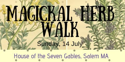 Witches' Herb Walk; Crafting Infused oils