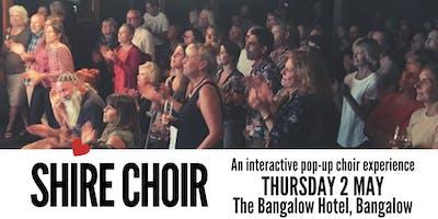 Shire Choir Bangalow - May